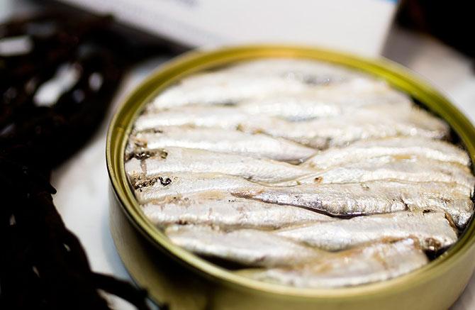 sardinas conserva Expoconser